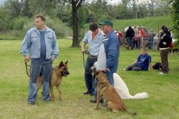 Na budúci rok si majitelia psov siahnu hlbšie do vrecka aj oni.