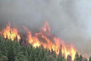 Na hasenie požiarov nie je v lokalite vodný zdroj.