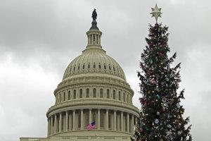 Americký národný vianočný stromček neďaleko Bieleho domu.