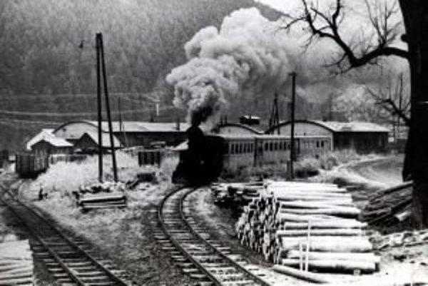 Posledný rozlúčkový osobný vlak prechádza popri depe lesnej železnice z Liptovského Hrádku do Liptovskej Tepličky.