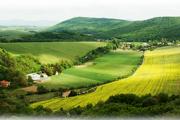 Obec Prašník je najmladšia v regióne Trnavy.