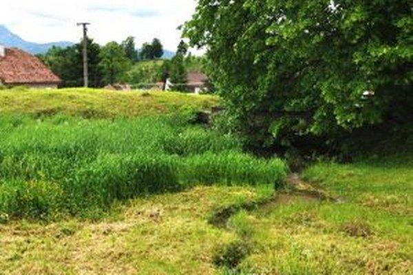 Vypustený rybník zaberá plochu štyritisíc metrov štvorcových, preteká cezeň miestny potok.