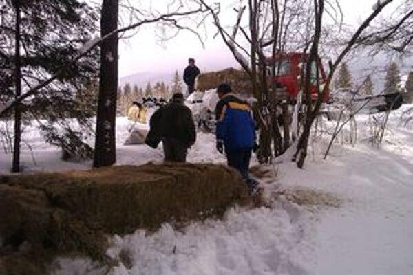Členovia Poľovníckeho združenia Baranec v Jakubovanoch zver prikrmujú, aby prežila kritické zimné obdobie.