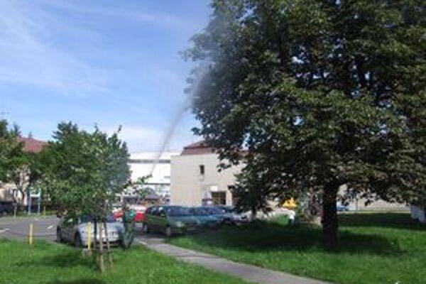 Postrek proti ploskáčikovi na pagaštanoch robili v Liptovskom Mikuláši.
