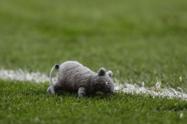 Jeden z plyšových potkanov, ktoré dopadli na hraciu plochu.