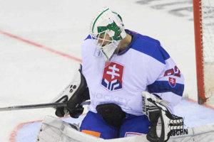 Brankár Andrej Košarišťan v reprezentačnom drese a v maske MHC Nové Zámky.