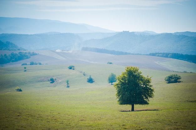 V Agrodružstve Bánová dbajú na princíp ekologického poľnohospodárstva a to od samotného zasadeného zrniečka až po konečný produkt, ktorý dostanete na stôl.