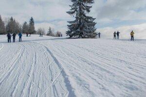 Snehové podmienky boli stále vyhovujúce.