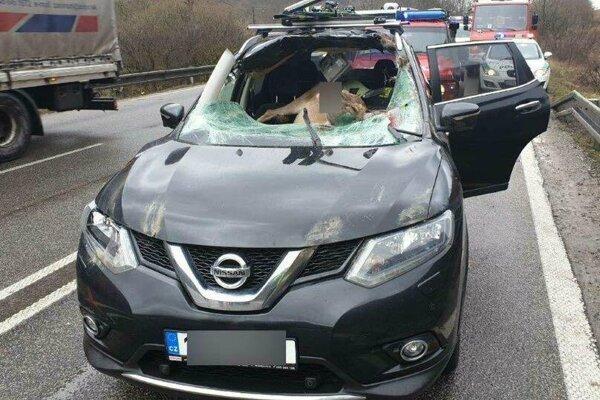 Jelenica ostala po zrážke v aute.