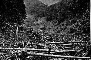 Škody na lesnom poraste likvidovali niekoľko rokov.