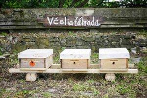 Pod%la včelára je tento drobny medonosný hmyz pre náš ekosystém nevyhnutný.