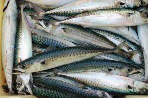 Ak zjete 100 gramov makrely, môžete získať až štvrtinu svojho denného príjmu vitamínu A.