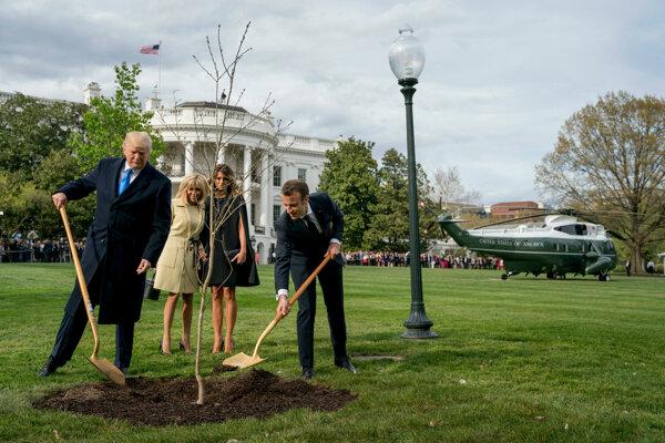 Trump dostane od Macrona nový strom.