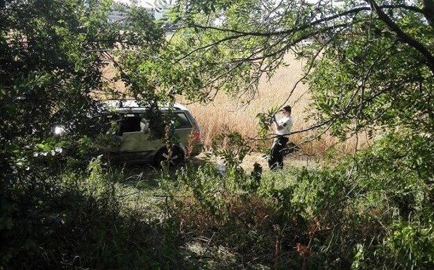 Vozidlo narazilo do stromu a skončilo v poli.