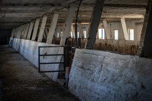 V týchto priestoroch v minulosti choval býky a dobytok Vadala predtým ako ich predal do Turecka.