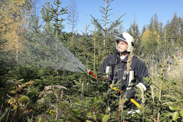 Hasenie lesa patrí medzi najnáročnejšie zásahy.