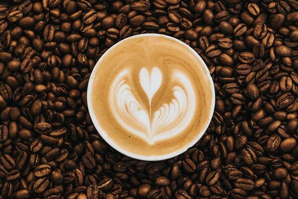 Americká spoločnosť chce priviesť na trh kávu a čaj s obsahom psilocybínu.