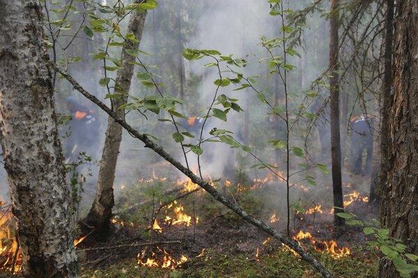 Podľa dostupných informácií horelo v stredu v ranných hodinách na území Ruska ešte stále približne 173 lesných požiarov.