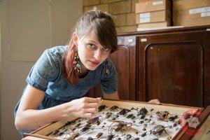 Lucia Chmurová pracovala štyri roky v Prírodovedeckom múzeu v Londýne ako entomologická a kurátorská asistentka v oddelení s chrobákmi.