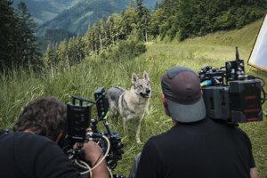 Filmári prežili 20 z 25 filmovacích dní v prírode.