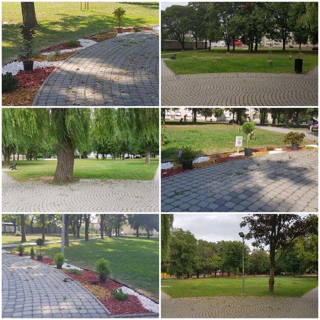 V parku pribudli kvetinové záhony.