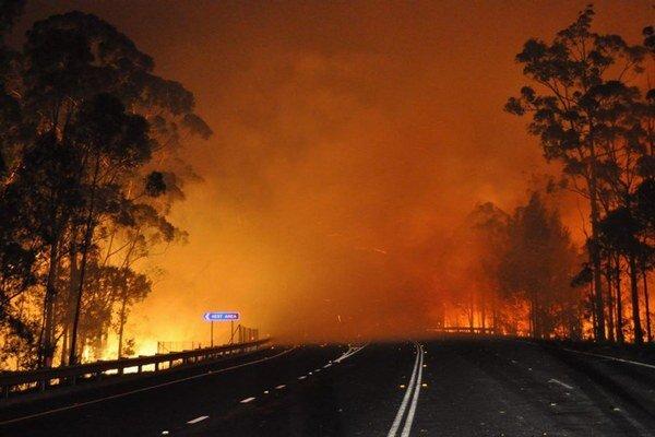 V Austrálli po horúčavách vlani veľa horelo.