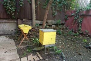 Mestské včelárstvo na dvore kina Úsmev.