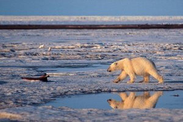 Na severe našej planéty je rekordne málo ľadu.