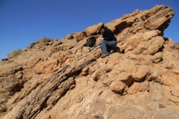 Abigail Allwoodová, americká geologička z Kalifornského technického inštitútu v Pasadene, študuje zloženie skaly a hľadá známky života.