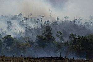 Oheň pohlcuje amazonský prales v brazílskej Altamire 27.8.2019.