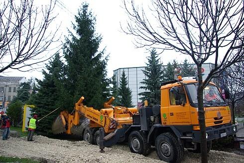 stromy9.jpg