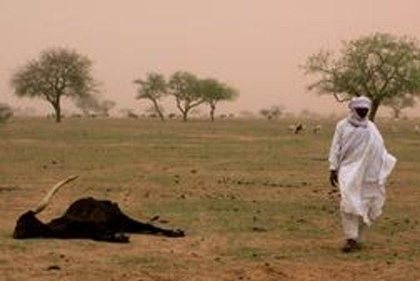 Rozširovaniu púšte má zabrániť veľká stena zo stromov.