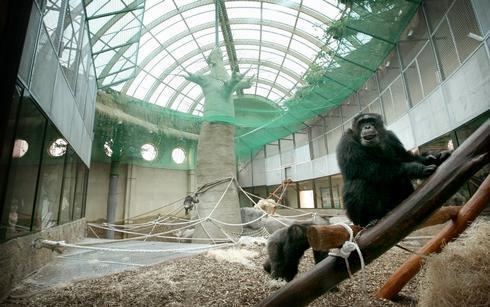 zoo_res.jpg