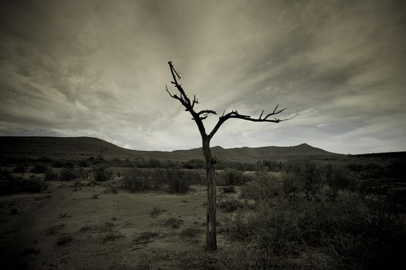 in-africa-ii.jpg