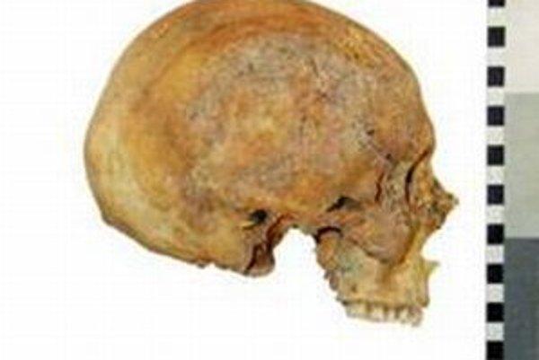 Lebka Mikuláša Kopernika.