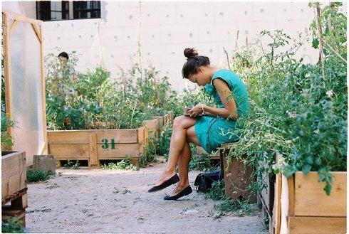 ba-1011-007f-zahrada.rw_res.jpg
