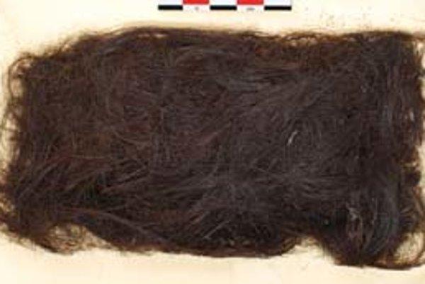 Vlasy dávneho predinuitského obyvateľa Grónska, muža z kultúry saqqaq, z ktorých vedci získali takmer úplnú mitochondriálnu DNA.