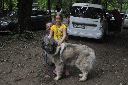 sarpalaninac_srbskeplemeno_res.jpg
