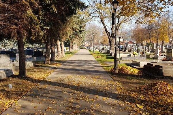 Hlavný cintorín v Liptovskom Mikuláši