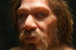 Vyhynutie neandertálcov nemuselo spôsobiť súperenie s modernými ľuďmi, ale niekoľko populačných problémov.