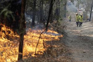 Lesný požiar pri austrálskom meste Bendalong.