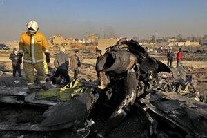 Trosky spadnutého lietadla.
