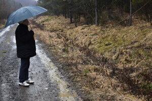 Anna Zimovčáková z Osadného ukazuje miesta, kde na jej pozemkoch spílili a zoštiepkovali stromy.