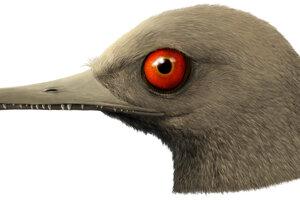 Umelecká predstava o dinosaurovi na základe lebky z jantáru.