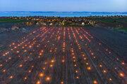 Parafínové sviece chránia pred mrazom marhuľový sad neďaleko maďarskej obce Balatonvilgos. Predpovede počasia môžu byť menej presné.