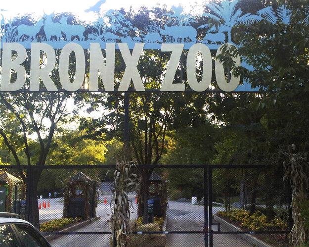 Vstup do zoologickej záhrady Bronx Zoo v New Yorku na archívnej fotografii z roku 2012.