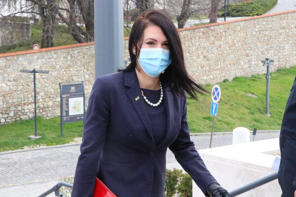 Poslankyňa za stranu SAS Jana Cigániková.