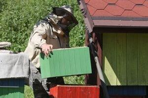 Včelár prišiel o úle aj o ochranné oblečenie.
