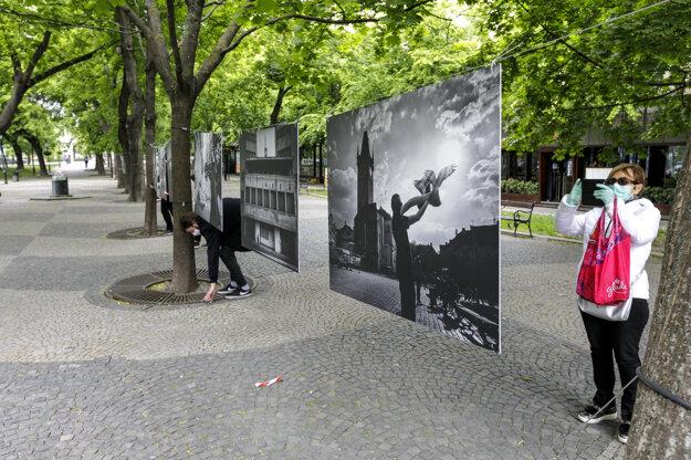 Výstava bude na Hviezdoslavovom námestí do 10. júna.