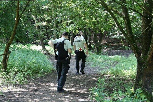 Policajti hliadkovali v lesoch v okolí Košíc.